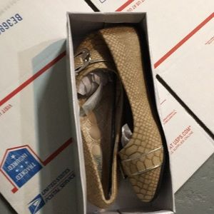 Women's Flat Shoe US Size 10 Brown. Brand New